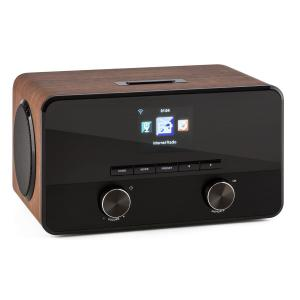 Connect 100 Radio Internet Reproductor multimedia Bluetooth WLAN USB AUX Line Out Nogal
